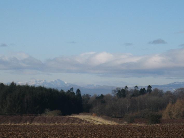 birthhills